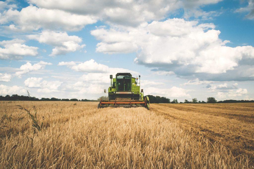 financial planning harvest tax losses
